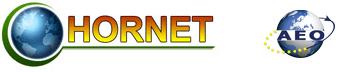 Hornet Gorzów Agencja Celna, Biuro Rejestracja pojazdów
